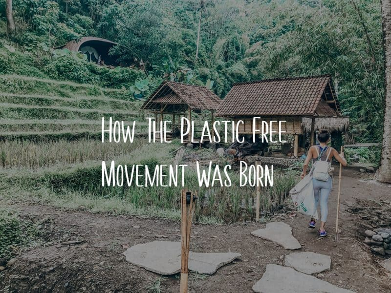 How The Plastic Free Movement Was Born Blog